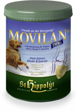 St. Hippoylt Movilan Dog